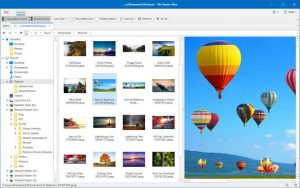File Viewer Plus Crack 4.0.2.8 + With Free Product Key Download [Latest] 2021
